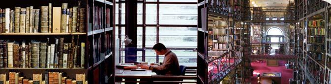 Готовые дипломные и курсовые работы по патопсихологии и  Клиническая психология патопсихология дипломы и курсовые